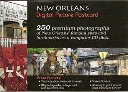 New Orleans Digital Picture Postcard
