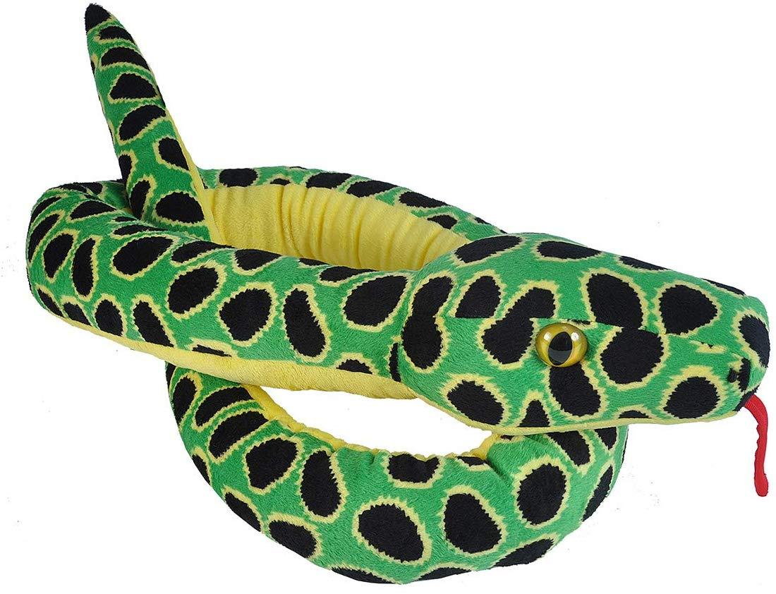 Anaconda Snakes,13052